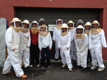 best bees (8)